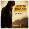 Petter Carlsen  - In The Time After