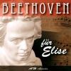 Ludwig Van Beethoven  - Fur Elise