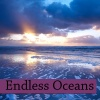 Robyn West  - Endless Oceans