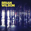 Brian Wilson  - The Right Time