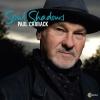 Paul Carrack  - Let Me Love Again