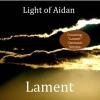 The Light Of Aidan  - Snowbird