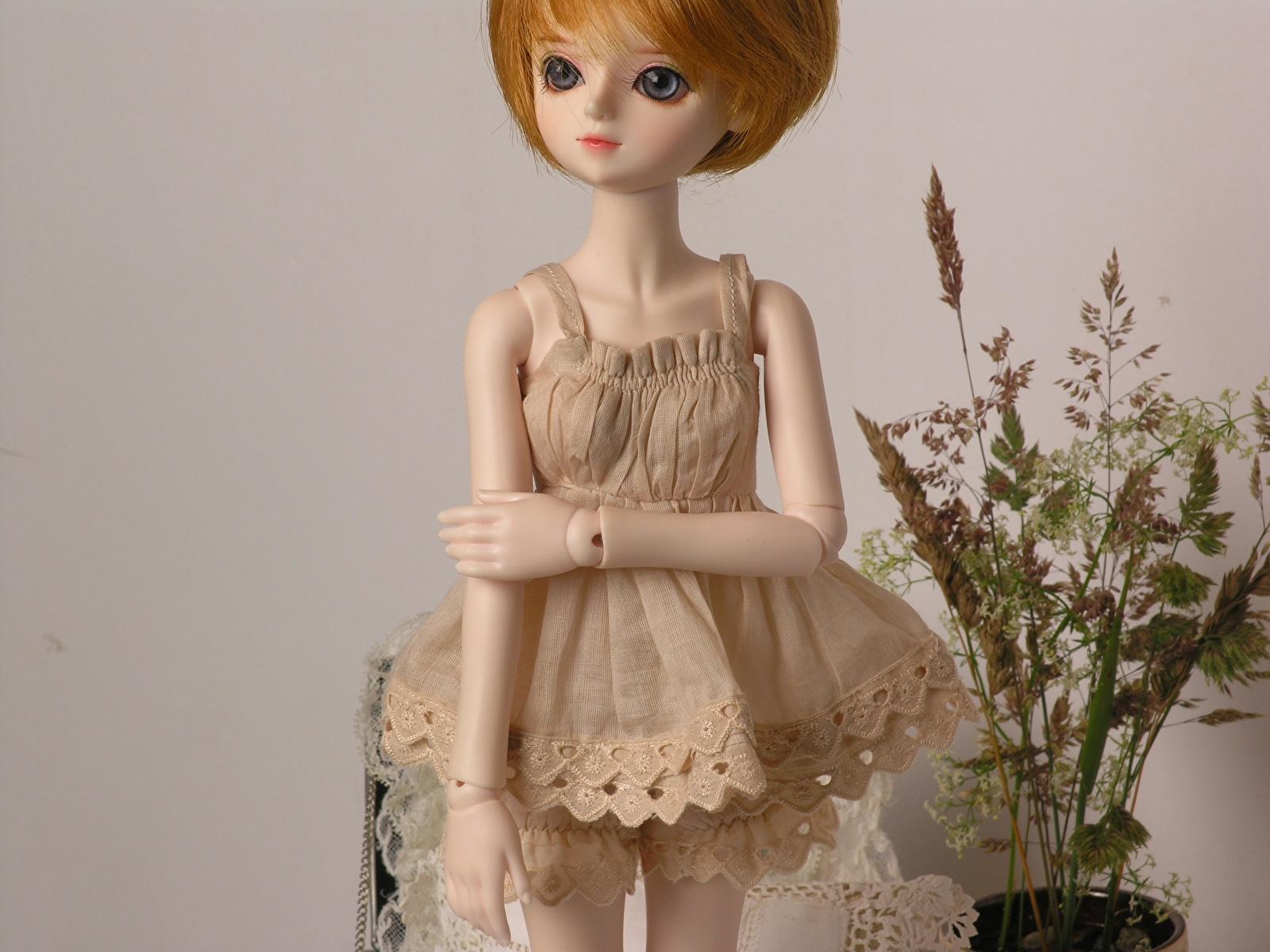 Кукла означает, что сновидец чувствует себя в роли ребенка, или он испытывает потребность в комфорте.